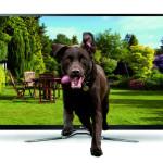 Аренда телевизоров: описание услуги