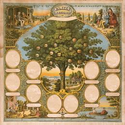 фамильное древо образец