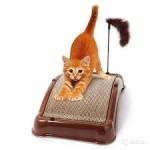 Когтеточка — лучший способ точить когти для кошки