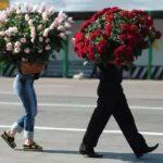 Доставим Вам цветы по Украине и миру